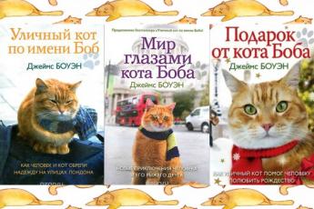 Книги серии Уличный кот по имени Боб