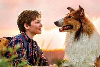 Фильмы про собаку Лесси
